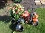 Výzdoba motocyklů